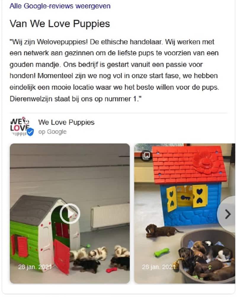 De aanhouder wint: We Love Puppies permanent gesloten